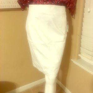 Plain white/ back zip- knee length skirt